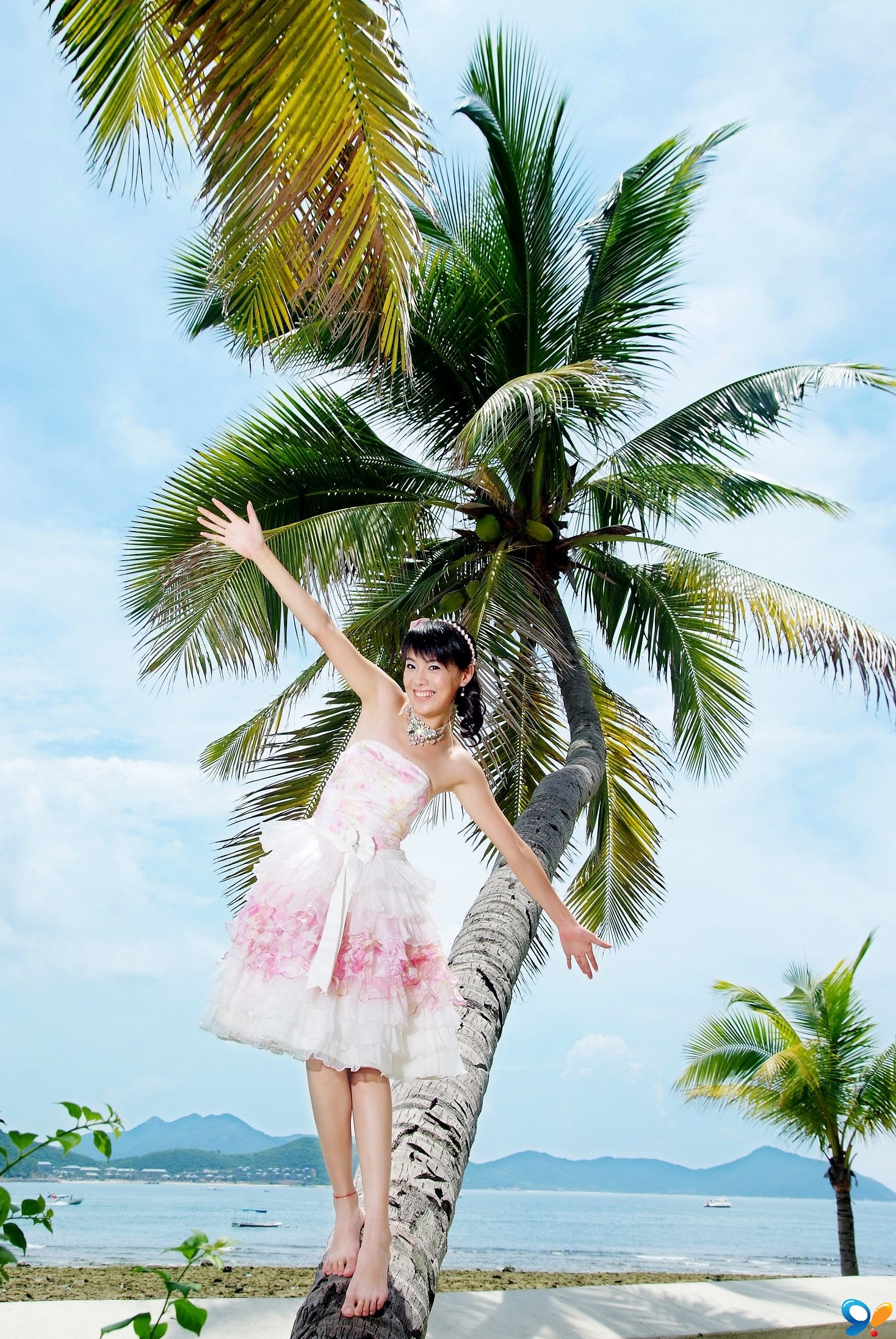 可爱的椰子树(游戏名:断翼的天使)